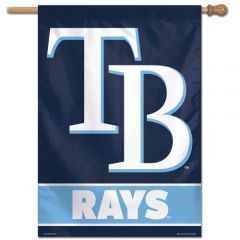 Tampa Bay Rays Banner