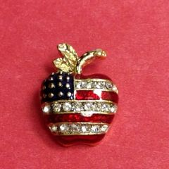 Rhinestone Apple USA Pin