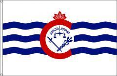 Cincinnati Flag, City of